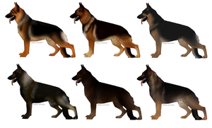 German Shepherd Imports OPEN 1 LEFT! by Litleocub0722