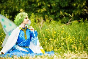 Amongst the Clovers and Dandelions by Haayls