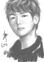 Baekhyun Digital art by thumbelin0811