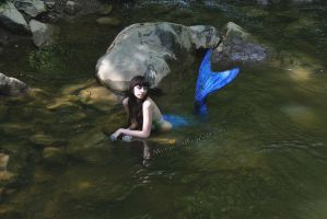 Mermaid's Conceit (stock) (2015) by QueenWerandra