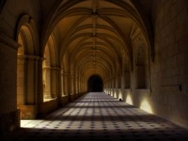 Fontevraud Abbey III by Toast-Muncher