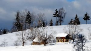 Clarina winter landscape by anmaria