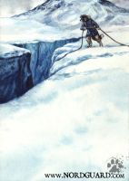 Nordguard Game: Unplanned Descent by screwbald