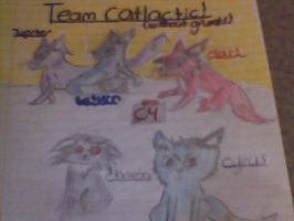 Team Catlactic! (without grunts) by Espeon804