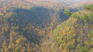 Canyon in Fall 8 by ToshirotheKnightWolf