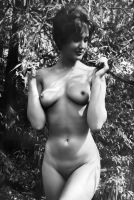 Nude Late 1960's by NJDVINTAGE