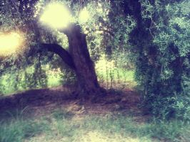 tree by SuperPsycoLoveAddict