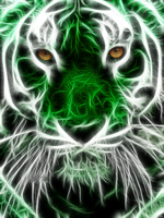 Green tigris by xinje