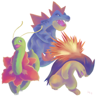Pokemon Jhoto starters stage3 by Haychel