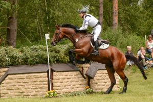 3DE Cross Country Ingrid Klimke Hale Bob 27 by LuDa-Stock