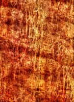Orange Grunge Texture 1 by webgoddess