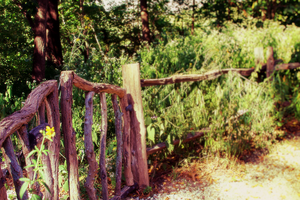 Fae Fence by gracie-is-a-pie
