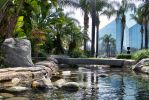 Crystal Cathedral Garden 3 by Royce-Barber