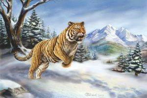 Siberian Tiger hunting by Bisanti