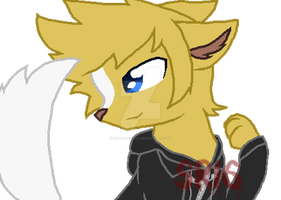 Roxas as wolf by SuperRosey16