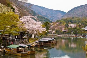 Spring in Arashiyama by eight-eight
