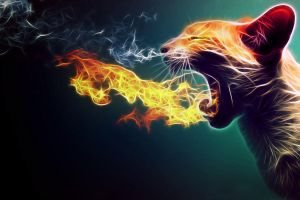 Flaming Cat - fractalius by megaossa