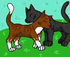 Leafpool and Crowfeather amv by Hollyivypool