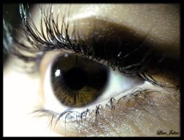 Brown Eye by Lj-24