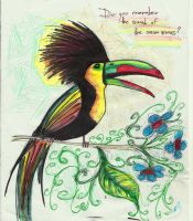 Parrot by concho