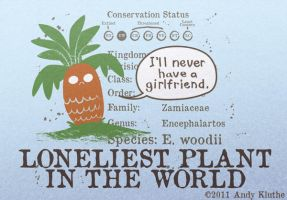 Loneliest Plant in the World by AndyKluthe