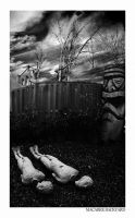 macabre backyard by monochrome