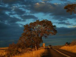 Roadtrip in Tasmania by Juliemarie91