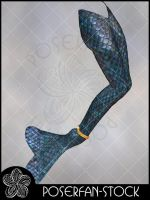 MerMaid Tail 002 by poserfan-stock