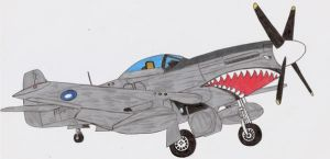 P-51 Mustang Scrap by DingoPatagonico
