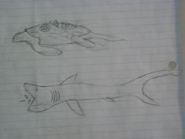 Giant Reef Turtle and Gulper Shark by pantophage