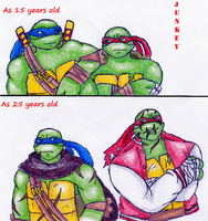 TMNT 2012 Leo and Raph younger and older by Junkeyturtle
