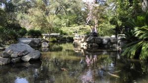 Two Lovers and Japanese Pond by AndySerrano