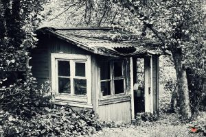 Old Garden Shack by llllollll