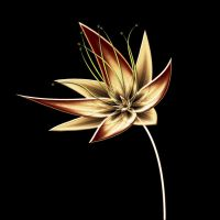 Feanorian Flower ~ for the House of Feanor by iRISSIEL