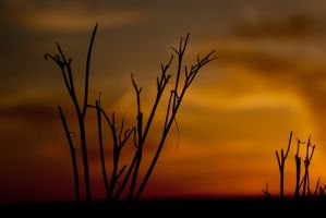 Sunset over Holme Moss 1 by OccipitalClimax