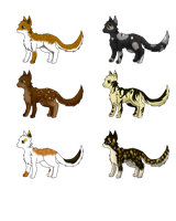 Cheap Natural coloured cat adopts by Mythic-Flame