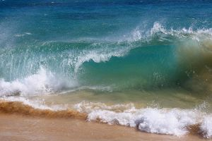 Maui Blue Surf by Line-of-Birds