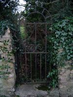 Iron Gate, Ivy Alley by heymatt