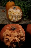 pumpkin carving 2 by Cissell