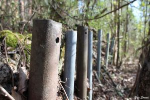 Forest Poles by luv-maiki