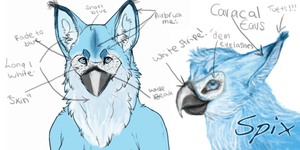 Spix front and side ref ^^ by Kadinskies