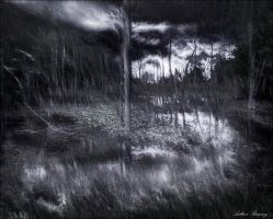 Swamped by rsiphotography