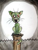 zombie cat on a post by BYRONvonREMPEL