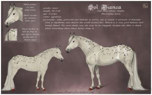 Sol Bianca - reference sheet by Aomori