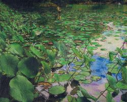 Eric in The Lilly Pads by RandySprout