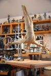 gymnast almost fin 1 by MarkNewman