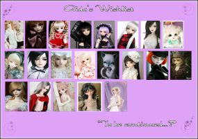 BJD Wishlist December09 by AidaOtaku