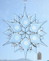 First Snowflake of 2010 by CeltCraft
