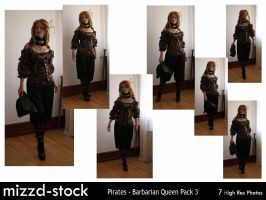 Pirates - Barbarian Queen Pack 3 by mizzd-stock