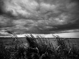 Clouds above italian countryside by zenmetalshirt